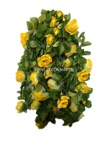 chainlink yellow rose garland